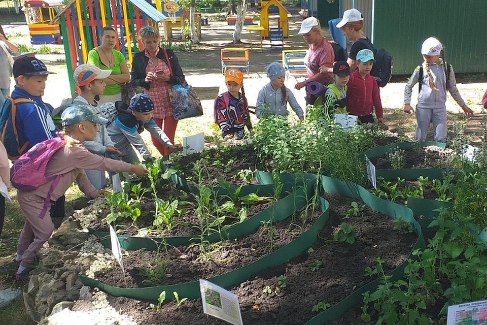 «Русский ниндзя» в пензенском детском саду